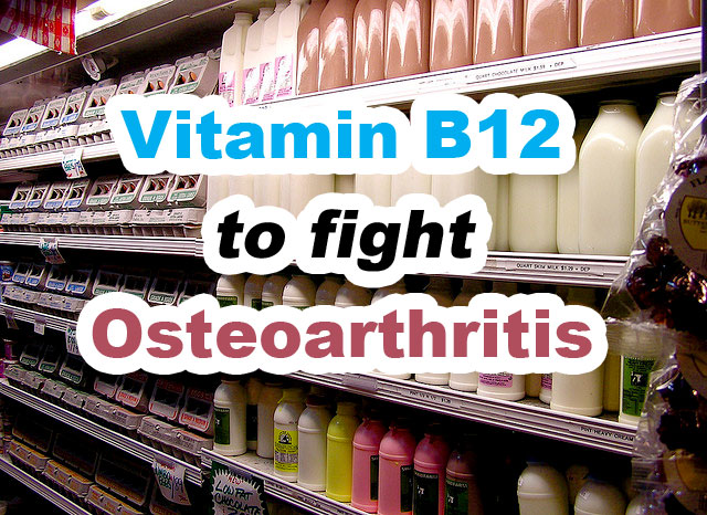 Vitamin B12 to Fight Osteoarthritis