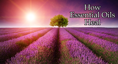 How Essential Oils Heal