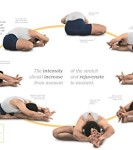 BKS-Iyengar-Yoga-The-Path-to-Holistic-Health-0-1