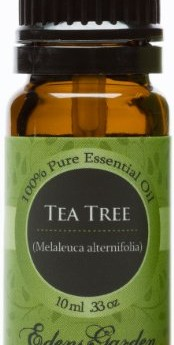 Tea-Tree-Melaleuca-100-Pure-Therapeutic-Grade-Essential-Oil-10-ml-0