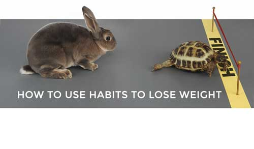 How to Use Habits to Lose Weight