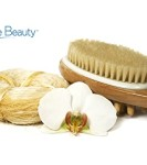 Sublime-Beauty-HEALTHY-ORIGINAL-BODY-BRUSH-Improve-Your-Well-Being-Now-With-Dry-Skin-Brushing-FREE-How-To-Brochure-Sent-by-Email-Dry-Brushing-is-an-Ancient-Secret-to-Better-Health-Circulation-Glowing--0-1