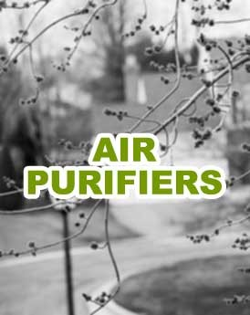 Seasonal Allergy Air Purifiers