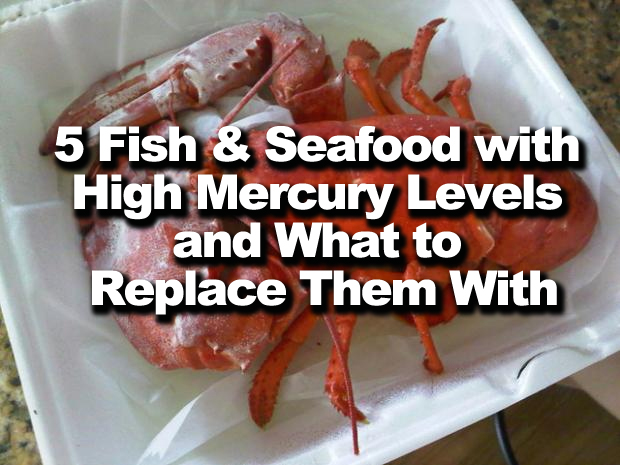 5 fish and seafood with high mercury levels and what to for Fish with high mercury content